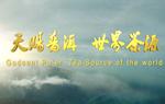 《天赐乐虎国际娱乐官网 世界茶源》乐虎国际娱乐官网城市宣传片