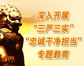 """深入开展""""三严三实""""和""""忠诚干净担当""""专题教育"""