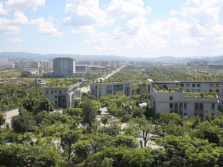 打造森林城市 建设美丽普洱