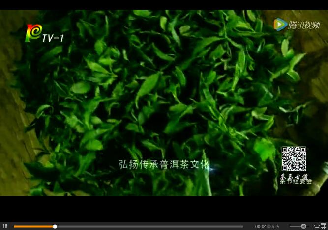 第十五届中国普洱茶节宣传视频