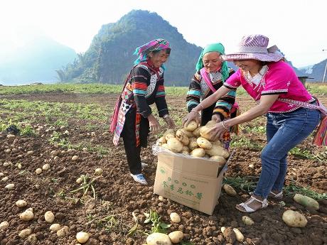 中国工程院助拉祜山乡农民脱贫