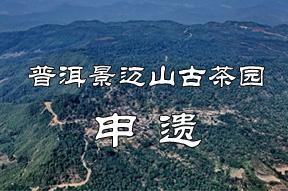 乐虎国际娱乐官网景迈山古茶园申遗