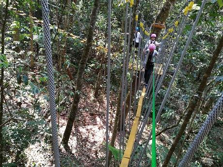 普洱首个丛林探险项目迎客