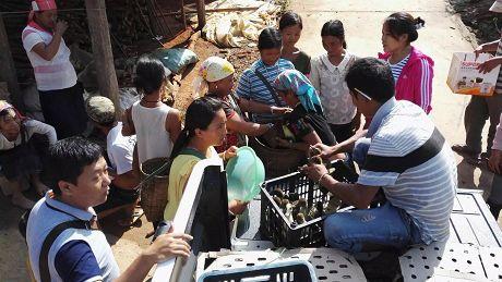 腺鸡产业成为农民增收新渠道