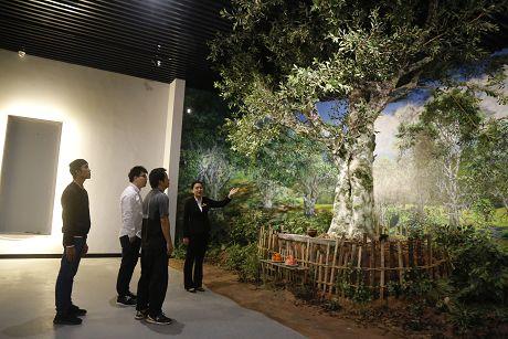 普洱茶博物馆六月开展