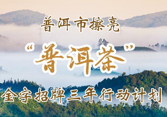 """【云南网图解】普洱市擦亮""""普洱茶""""金字招牌三年行动计划"""