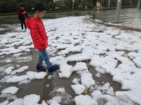 注意防范!昨日普洱多地下起了冰雹