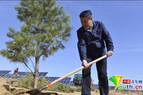王文彪在沙漠中种树。资料图