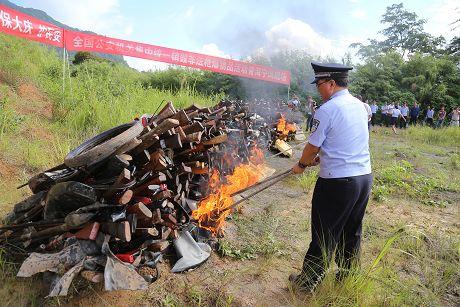 普洱市集中销毁非法枪爆物品