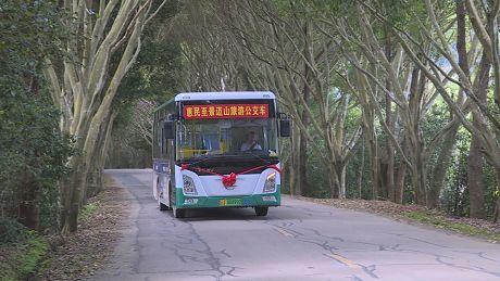 """""""绿色公交车""""开进景迈山"""