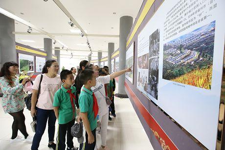 """普洱市庆祝""""新中国成立70周年""""系列主题展览迎观展热潮"""