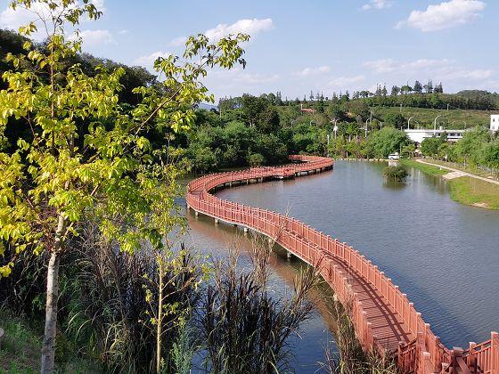 思茅河及8条支流水质向好