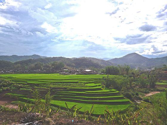 坚持绿色发展保护生态环境