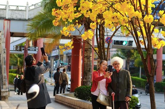 """【回眸""""十三五""""】普洱:文明幸福之城2020年交出不平凡答卷"""