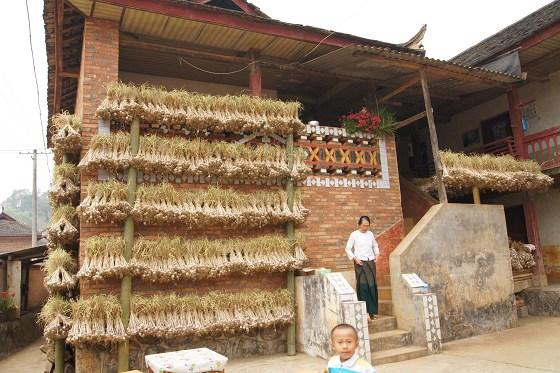 产业发展助推乡村振兴