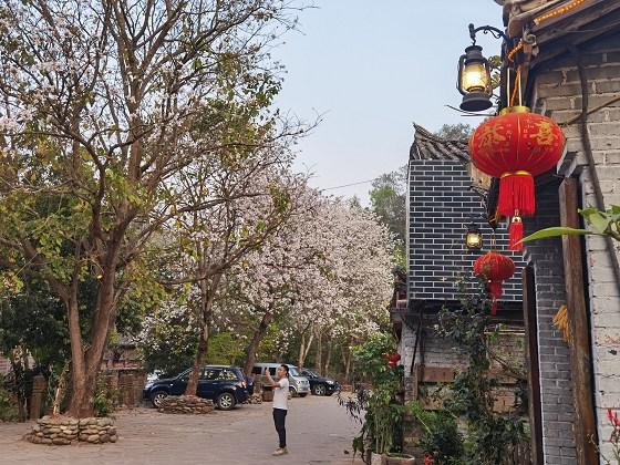 宁洱县全力打造生活富裕的幸福乡村